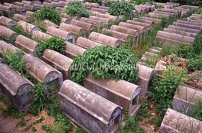 MYANMAR (BURMA), Yangon. Jewish Cemetery. (2005)