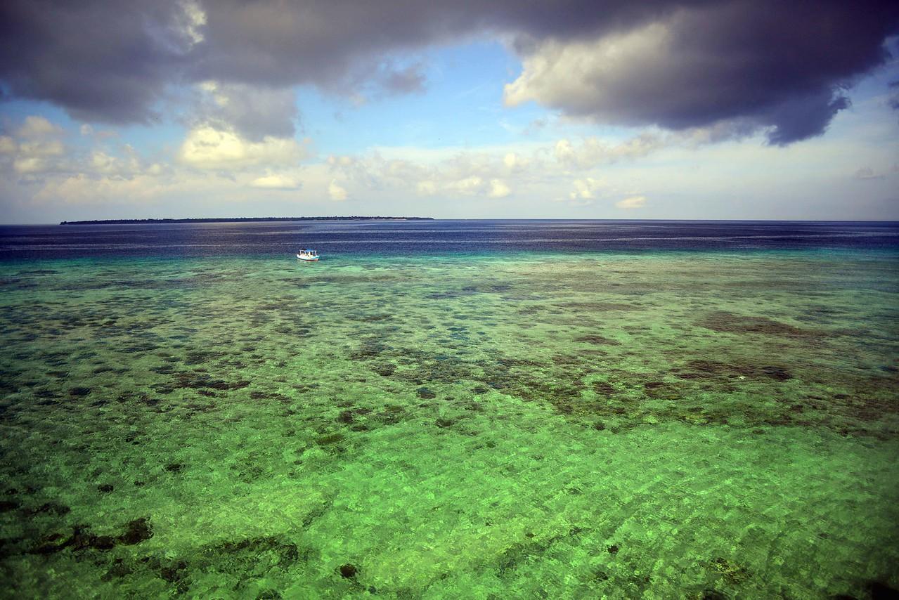 Tanjung Bira reef