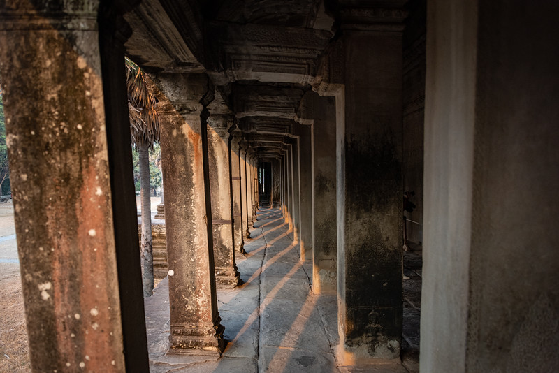 2019 Siem Reap Ankor Temples Cambodia-92246