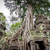 2019 Siem Reap Ankor Temples Cambodia-92614