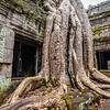 2019 Siem Reap Ankor Temples Cambodia-92542