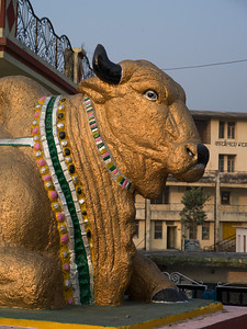 Close-up of a statue of Nandi the Bull, Narendranagar, Tehri Garhwal, Uttarakhand, India