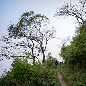 Tourists on hiking trail to Kunjapuri Devi Temple, Adali, Narendranagar, Tehri Garhwal, Uttarakhand, India