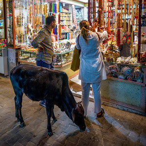 Tourists shopping at a souvenir shop, Rishikesh, Dehradun District, Uttarakhand, India