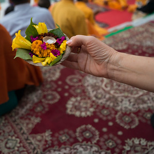 Person's hand holding disposable plate of religious offerings for Ganga Aarti, Rishikesh, Dehradun District, Uttarakhand, India