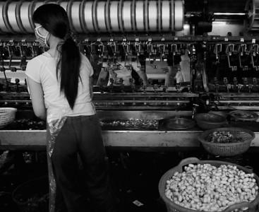 Da Lat City, Vietnam, Silk Worm Women's Co-Op