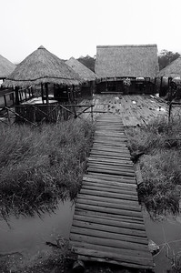 Da Lat City, Vietnam, Elephant Village
