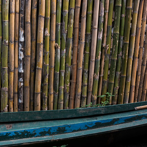 Close-up of bamboo posts, Luang Prabang, Laos