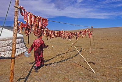 drying meat outside ger. western mongolia