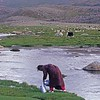 Woman collecting water from river. western mongolia