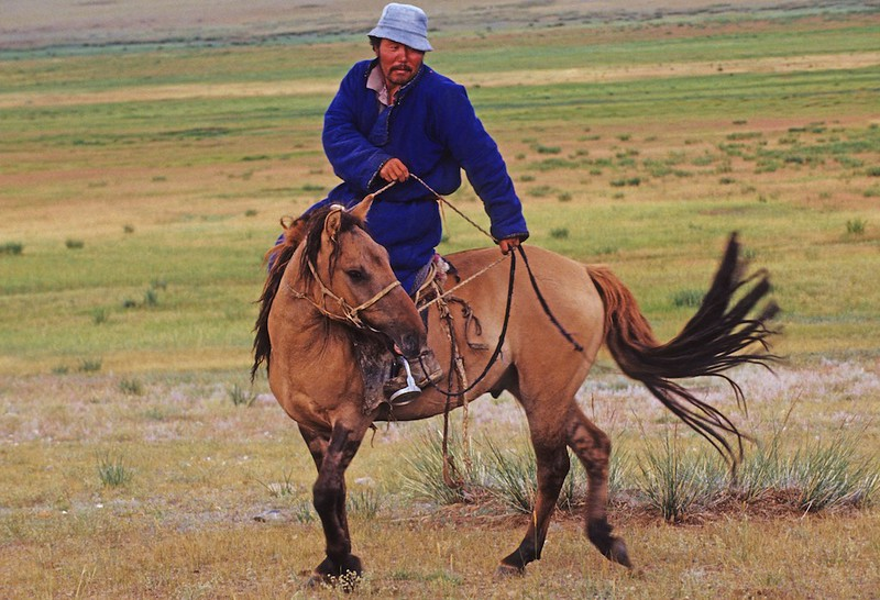 Horseman. Western Mongolia