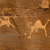 Saudi Arabia, Najran Province, Abar Hima, Rock Art Depicting A Hunter With Camels