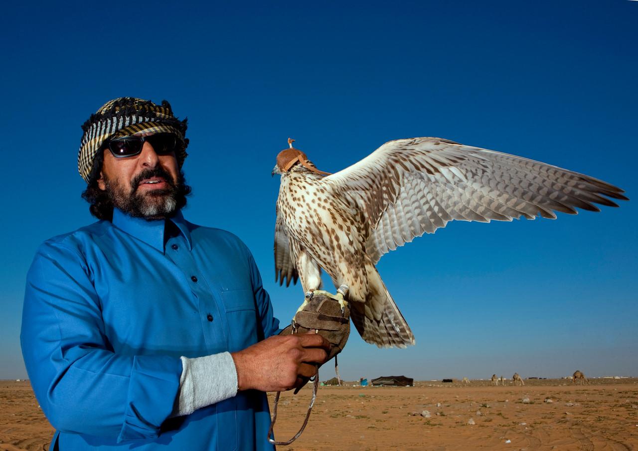 Saudi Arabia, Al Jawf Province, Sakakah, Saudi Man With His Falcon