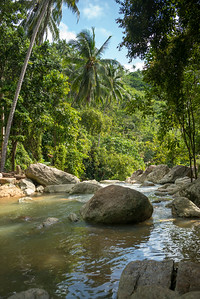 Stream flowing through forest, Koh Samui, Surat Thani Province, Thailand