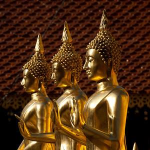 Thai10035.jpg