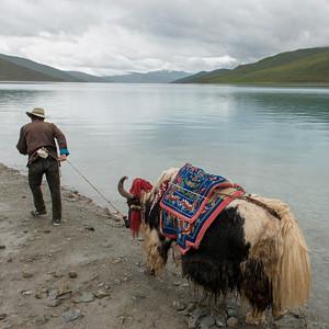 tibet12055.jpg