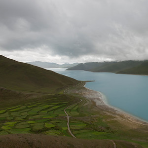 tibet12054.jpg