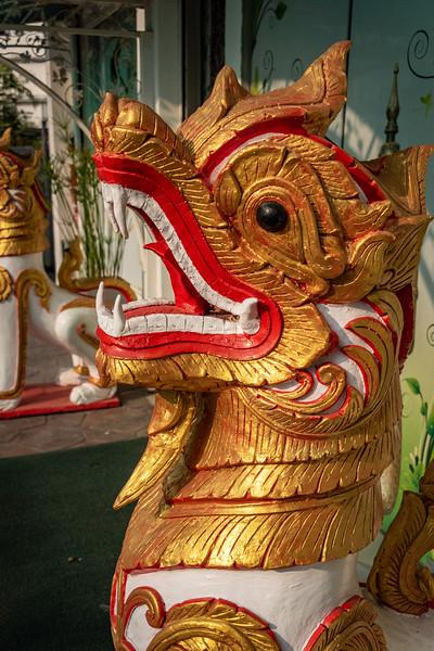 2019 Chiang Mai Thailand-98169