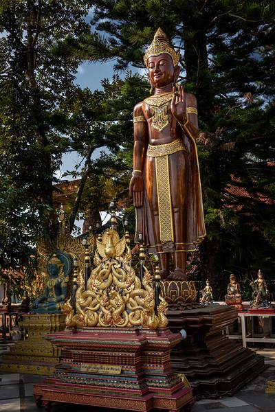 2019 Chiang Mai Thailand-97838