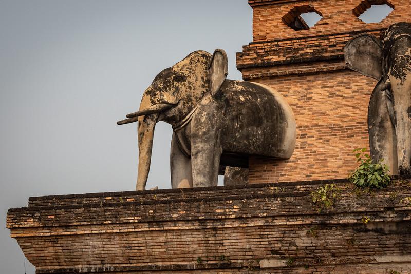 2019 Chiang Mai Thailand-97379