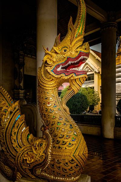 2019 Chiang Mai Thailand-97319