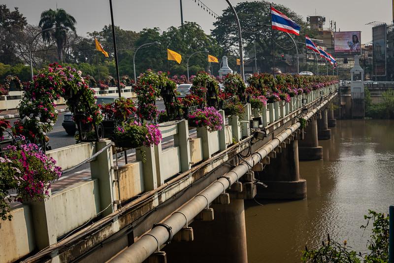 2019 Chiang Mai Thailand-97468