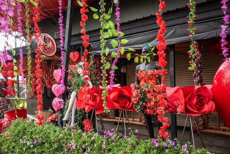 2019 Chiang Mai Thailand-97435