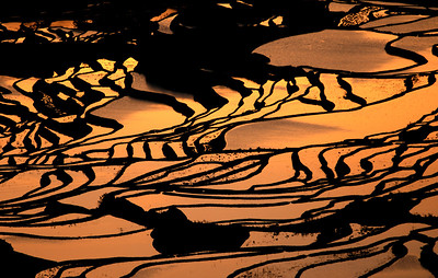 Early morning in Yuan Yang rice terrace