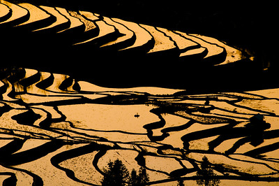 Dramatic landscape in YuanYang, Yunnan,China