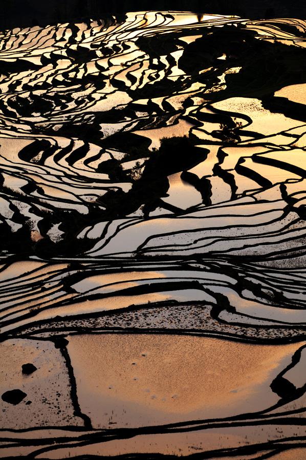 The beautiful Rice terraces in Yuan Yang, Yunnan,China