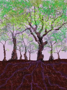 Jo Anne_Pulko_My Life as a Tree