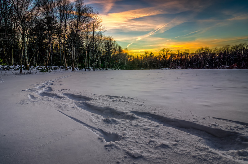 Hopkinton - Tracks in the snow