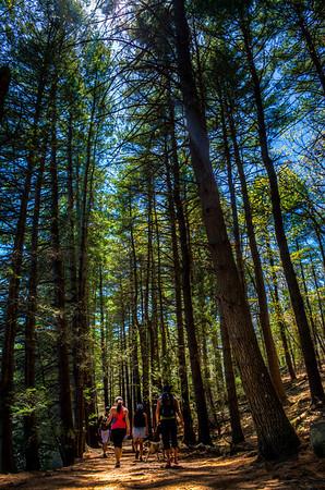 Reservoir Trail at Ashland State Park