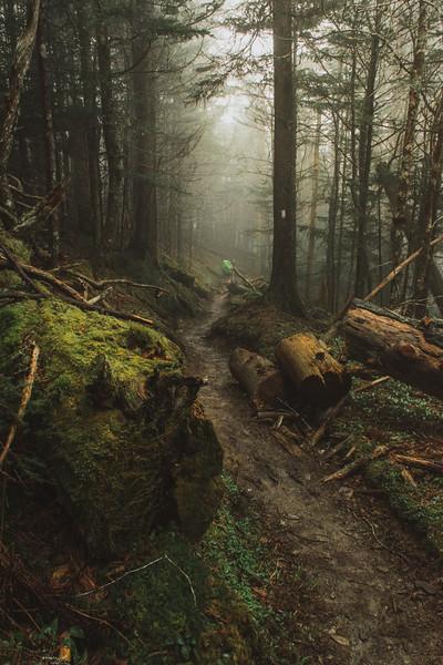 The Wandering Hiker