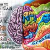 17 - Right Left Brain
