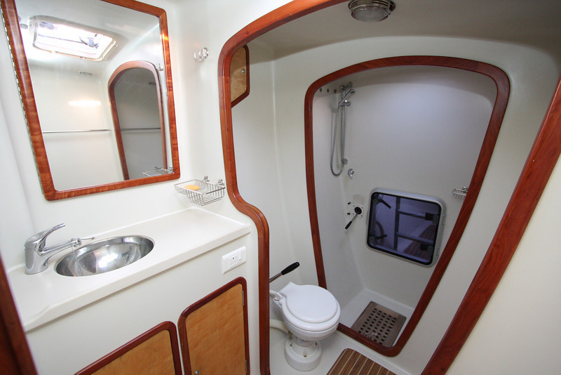 Starboard head and separate shower stall. All easy to clean surfaces.