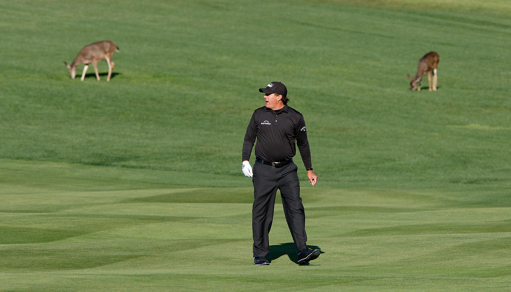. Phil Mickelson walks up the second hole at the Pebble Beach Golf Links during the final round of the AT&T Pebble Beach Pro-Am on Sunday, Feb. 11, 2018.  (Vern Fisher - Monterey Herald)