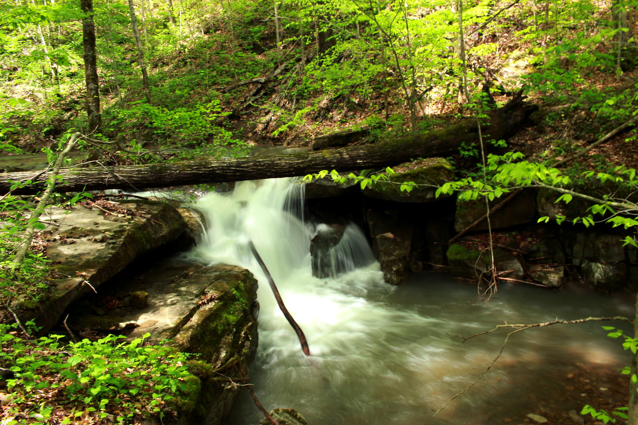 10 ft falls on Lost Cane Creek