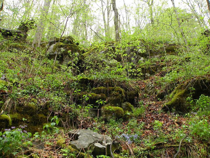 Slopes of Bills Creek