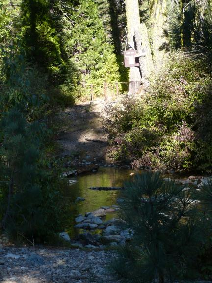 A closed camp across Pauley Creek, near where the Pauley Creek Trail becomes single track and continues south.