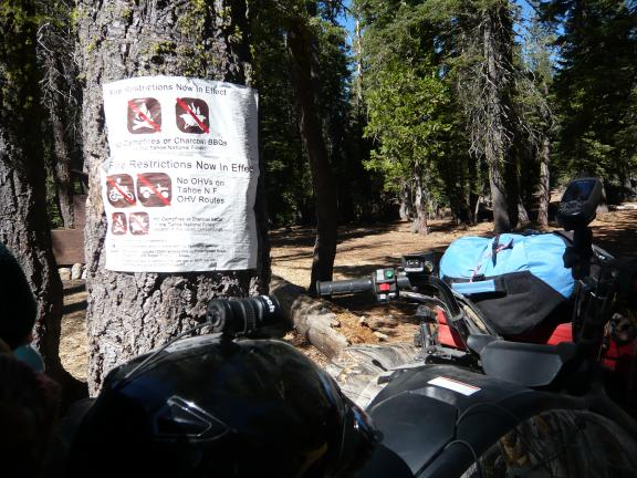 Grizzly by another fire restriction sign (restrictions had actually ended the night before).