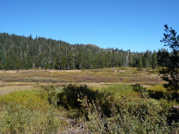 The Sierra Hilton alongside large meadow near Hawley Lake.