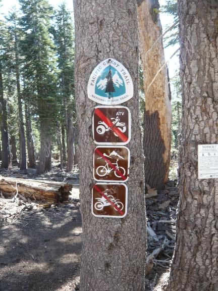 Pacific Crest Trail signs (PCT crosses the motorized trail here) at border between Plumas and Tahoe national forests.