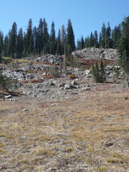 A meadow near Hawley Lake in Tahoe National Forest.