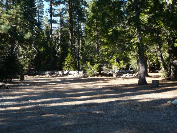 A camping spot near where the Pauley Creek Trail becomes single track and continues south.