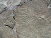 PetroglyphsAtRoyalGorge_05