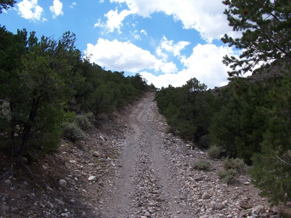 The Paiute 01 trail southwest of Kingston Canyon, on the way to Circleville.