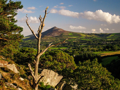 Towards the Great Sugarloaf from The Scalp