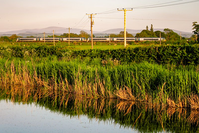 Train passing to the south of the Grand Canal near Naas
