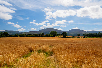 The Tipperary Heritage Way passes through farming countryside north of the Knockmealdowns